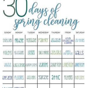 spring cleaning in 30 days